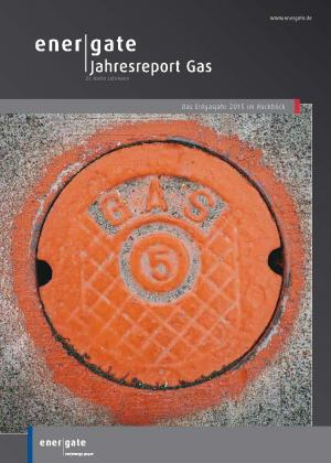 Cover for Jahresreport Gas |2015