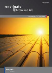 Cover of Jahresreport Gas |2014