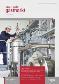 Cover of energate Gasmarkt 10|20