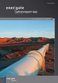 Cover of Jahresreport Gas |2013