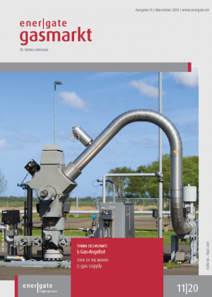 Cover for energate Gasmarkt 11|20