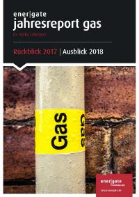 Cover of Jahresreport Gas |2017