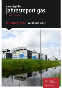 Cover of Jahresreport Gas |2019